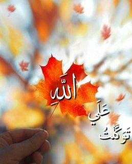 توکلت علی الله...